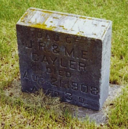 CAYLER, INFANT DAUGHTER - Hamilton County, Iowa | INFANT DAUGHTER CAYLER