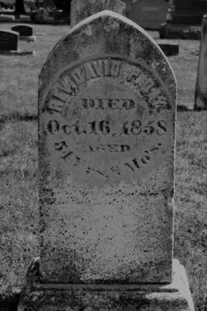 DAY, DAVID P., REV. - Hamilton County, Iowa   DAVID P., REV. DAY