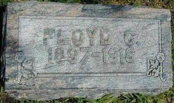 DINGMAN, FLOYD CLIFFORD - Hamilton County, Iowa | FLOYD CLIFFORD DINGMAN