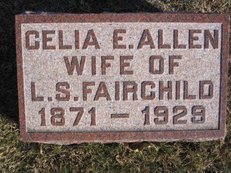 FAIRCHILD, CELIA E. - Hamilton County, Iowa   CELIA E. FAIRCHILD
