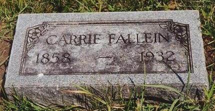 FALLEIN, CAROLINE - Hamilton County, Iowa | CAROLINE FALLEIN