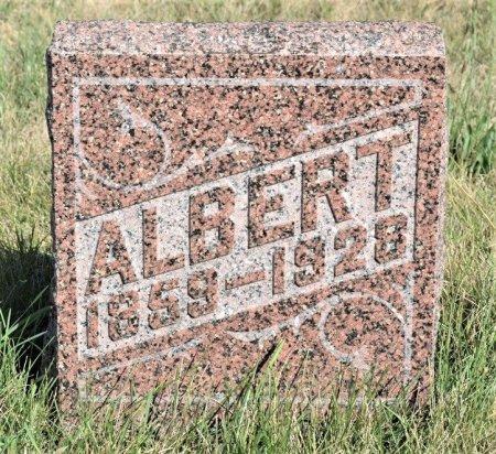 FELLESON, ALBERT - Hamilton County, Iowa | ALBERT FELLESON