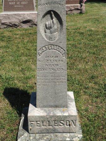 FELLESON, ANDREW JOHAN - Hamilton County, Iowa | ANDREW JOHAN FELLESON