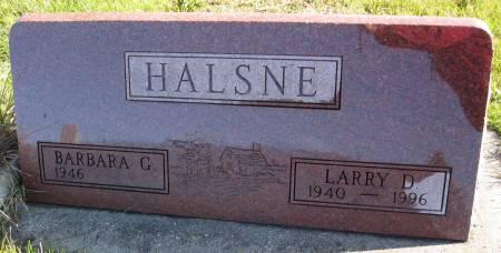 HALSNE, LARRY D. - Hamilton County, Iowa | LARRY D. HALSNE