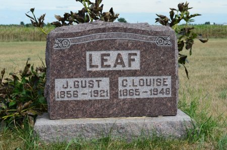 JOHNSON LEAF, C. LOUISE - Hamilton County, Iowa | C. LOUISE JOHNSON LEAF