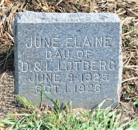 LOTBERG, JUNE ELAINE - Hamilton County, Iowa | JUNE ELAINE LOTBERG