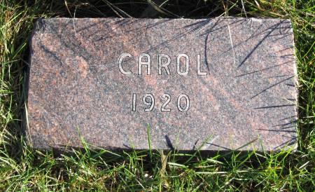 LOWERY, CAROL - Hamilton County, Iowa | CAROL LOWERY