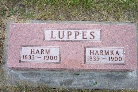 LUPPES, HARM - Hamilton County, Iowa | HARM LUPPES