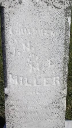 MILLER, CHILDREN OF JM & ME - Hamilton County, Iowa | CHILDREN OF JM & ME MILLER