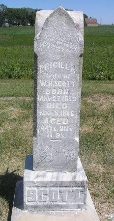 ROBINSON SCOTT, PRICILLA - Hamilton County, Iowa | PRICILLA ROBINSON SCOTT