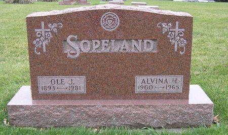 PEDERSON SOPELAND, ALVINA H. - Hamilton County, Iowa | ALVINA H. PEDERSON SOPELAND