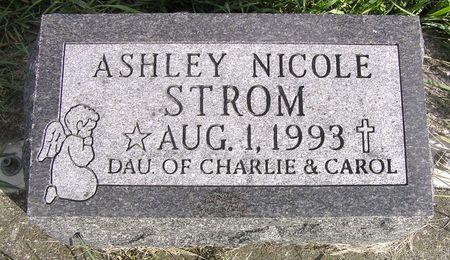 STROM, ASHLEY NICOLE - Hamilton County, Iowa   ASHLEY NICOLE STROM