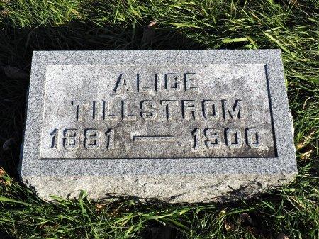 TILLSTROM, ALICE - Hamilton County, Iowa   ALICE TILLSTROM