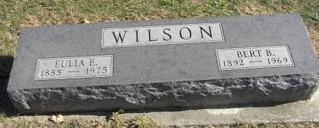 SCOTT WILSON, EULIA ETHEL - Hamilton County, Iowa   EULIA ETHEL SCOTT WILSON