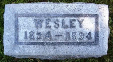 LAU, WESLEY - Hancock County, Iowa | WESLEY LAU