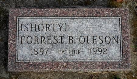 OLESON, FORREST  B (SHORTY) - Hancock County, Iowa | FORREST  B (SHORTY) OLESON