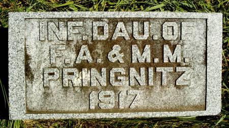 PRINGNITZ, INFANT - Hancock County, Iowa | INFANT PRINGNITZ
