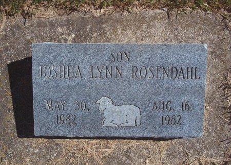 ROSENDAHL, JOSHUA LYNN - Hancock County, Iowa | JOSHUA LYNN ROSENDAHL