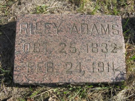 ADAMS, RILEY - Hardin County, Iowa   RILEY ADAMS