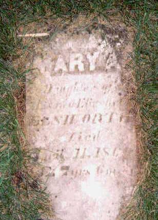 ELLSWORTH, MARY A - Hardin County, Iowa | MARY A ELLSWORTH