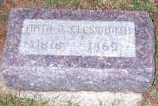 ELLSWORTH, NATHANIEL B - Hardin County, Iowa | NATHANIEL B ELLSWORTH