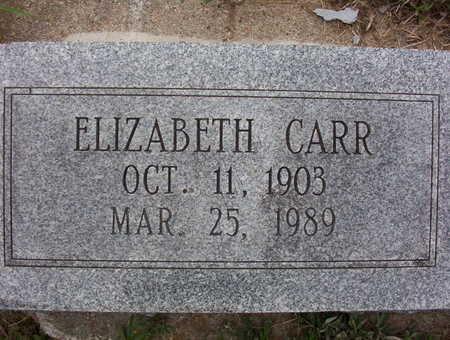 CARR, SARAH ELIZABETH - Harrison County, Iowa   SARAH ELIZABETH CARR