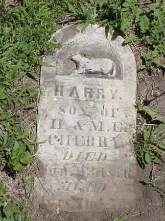 CHERRY, HARRY - Harrison County, Iowa | HARRY CHERRY