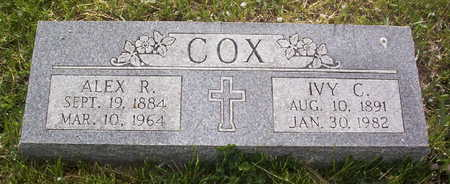 STEELE COX, IVY C. - Harrison County, Iowa | IVY C. STEELE COX