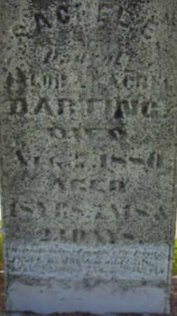DARTING, RACHEL E. - Harrison County, Iowa | RACHEL E. DARTING