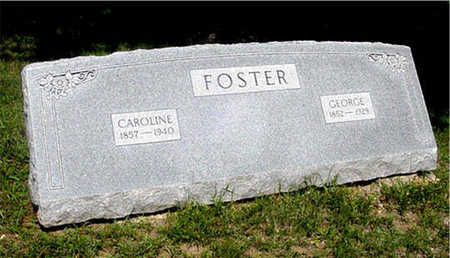 FOSTER, GEORGE - Harrison County, Iowa | GEORGE FOSTER