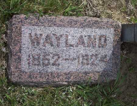 JOHNSON, ALEXANDER WAYLAND - Harrison County, Iowa | ALEXANDER WAYLAND JOHNSON