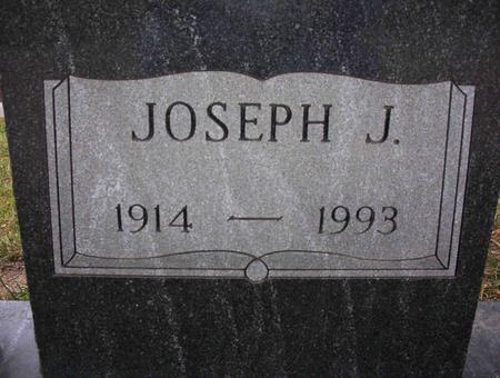 TAMISIEA, JOSEPH J - Harrison County, Iowa   JOSEPH J TAMISIEA