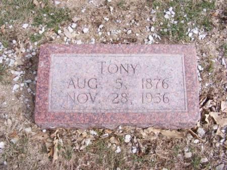 WATKINS, TONY - Harrison County, Iowa | TONY WATKINS