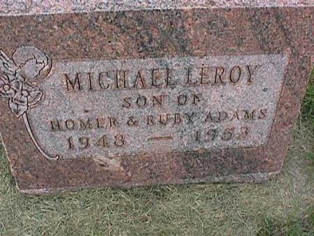 ADAMS, MICHAEL LEROY - Henry County, Iowa | MICHAEL LEROY ADAMS