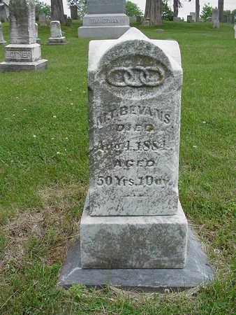 BEAVANS, M. T. - Henry County, Iowa | M. T. BEAVANS