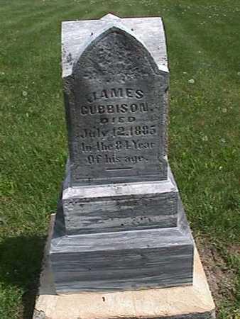 CUBBISON, JAMES - Henry County, Iowa | JAMES CUBBISON