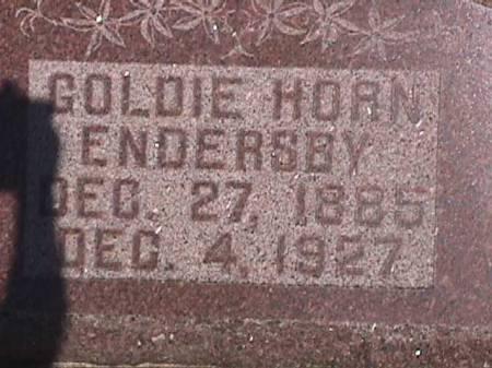 HORN ENDERSBY, GOLDIE - Henry County, Iowa   GOLDIE HORN ENDERSBY