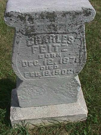 FEITZ, CHARLES - Henry County, Iowa   CHARLES FEITZ