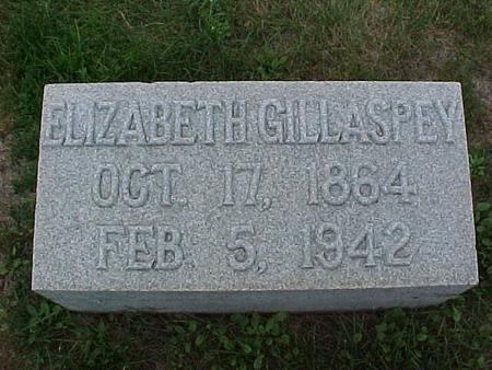 GILLASPEY, ELIZABETH - Henry County, Iowa | ELIZABETH GILLASPEY