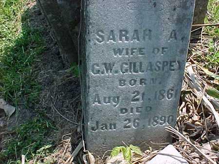GILLASPEY, SARAH A. - Henry County, Iowa | SARAH A. GILLASPEY