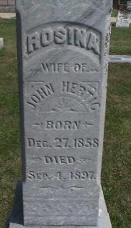 HERTIG, ROSINA - Henry County, Iowa   ROSINA HERTIG