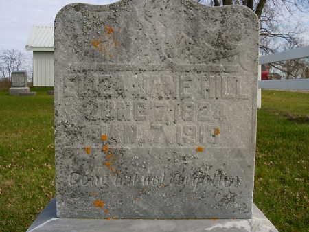 HILL, ELIZA JANE - Henry County, Iowa | ELIZA JANE HILL
