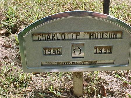 HODSON, CHARLOTTE - Henry County, Iowa | CHARLOTTE HODSON