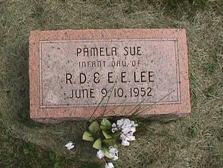 LEE, PAMELA SUE - Henry County, Iowa | PAMELA SUE LEE
