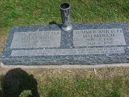 MEYER MALBROUGH, LYNN MARIE - Henry County, Iowa | LYNN MARIE MEYER MALBROUGH