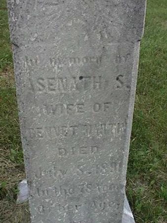 MARTIN, ASENATH - Henry County, Iowa   ASENATH MARTIN