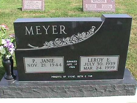 MEYER, P. JANIE - Henry County, Iowa | P. JANIE MEYER