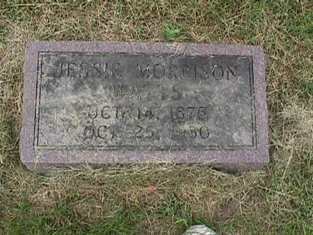 MORRISON, JESSE - Henry County, Iowa   JESSE MORRISON