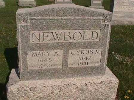 NEWBOLD, MARY A. - Henry County, Iowa | MARY A. NEWBOLD