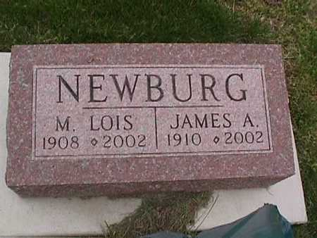 NEWBURG, JAMES - Henry County, Iowa | JAMES NEWBURG